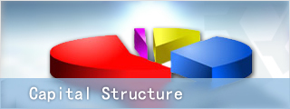 equity_structure